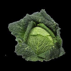 44_Gemüsebau Andree Wirsing