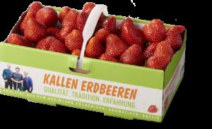 Kallen Erdbeeren 1kg Korb