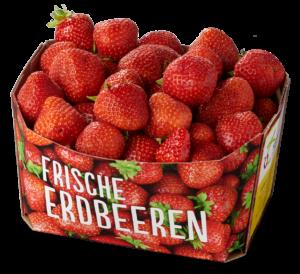 Küppers Obst Erdbeeren 1kg Schale (1)